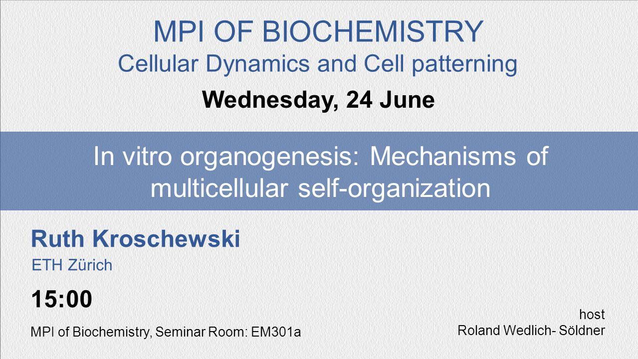 Ruth Kroschewski In vitro organogenesis: Mechanisms of multicellular self-organization Wednesday, 24 June MPI OF BIOCHEMISTRY Cellular Dynamics and Ce