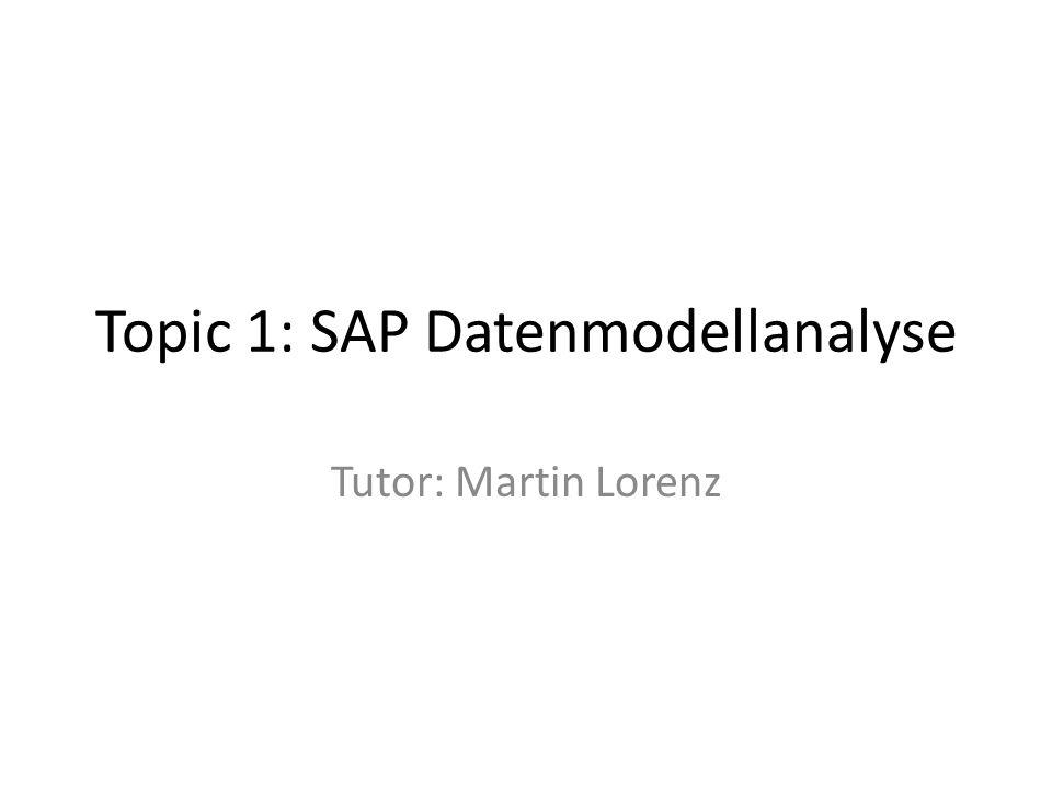 Topic 1: SAP Datenmodellanalyse Tutor: Martin Lorenz
