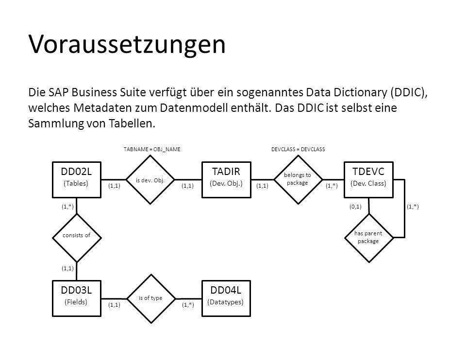 Voraussetzungen Die SAP Business Suite verfügt über ein sogenanntes Data Dictionary (DDIC), welches Metadaten zum Datenmodell enthält. Das DDIC ist se