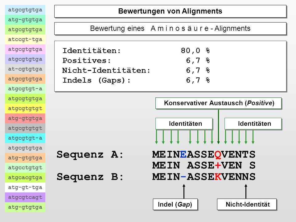 Bewertung eines N u k l e i n s ä u r e - Alignments atgcgtgtga atg-gtgtga atgcgtgtga atccgt-tga atgcgtgtga at-cgtgtga atgcgtgtga atgcgtgt-a atgcgtgtg