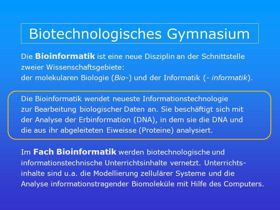Biotechnologisches Gymnasium Die Bioinformatik ist eine neue Disziplin an der Schnittstelle zweier Wissenschaftsgebiete: der molekularen Biologie (Bio-) und der Informatik (- informatik).