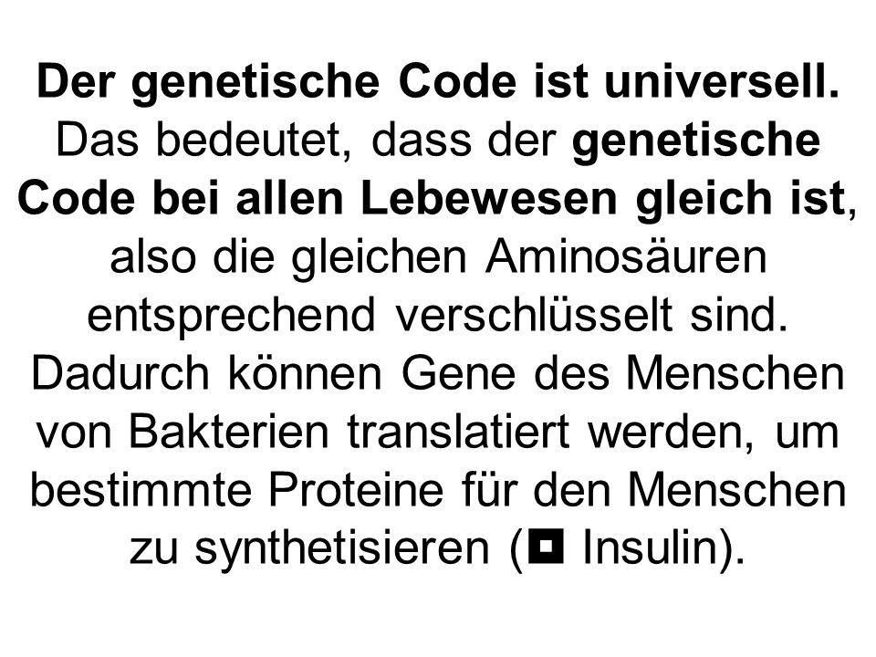 Der genetische Code ist universell. Das bedeutet, dass der genetische Code bei allen Lebewesen gleich ist, also die gleichen Aminosäuren entsprechend