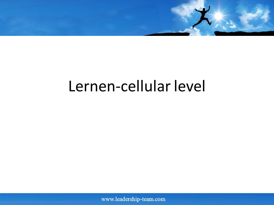 www.leadership-team.com Lernen-cellular level