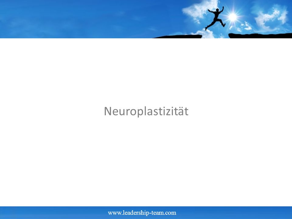 www.leadership-team.com Neuroplastizität