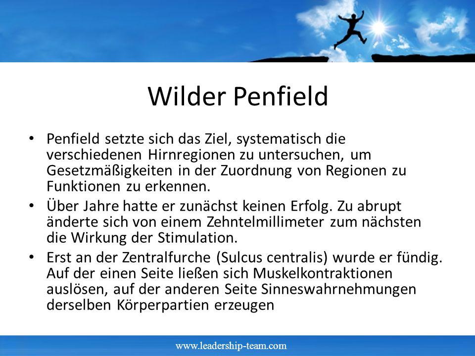 www.leadership-team.com Wilder Penfield Penfield setzte sich das Ziel, systematisch die verschiedenen Hirnregionen zu untersuchen, um Gesetzmäßigkeiten in der Zuordnung von Regionen zu Funktionen zu erkennen.