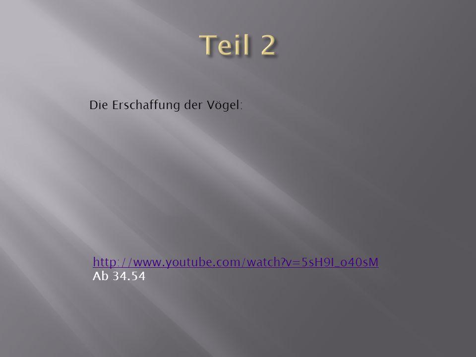 http://www.youtube.com/watch v=5sH9I_o40sM Ab 34.54 Die Erschaffung der Vögel: