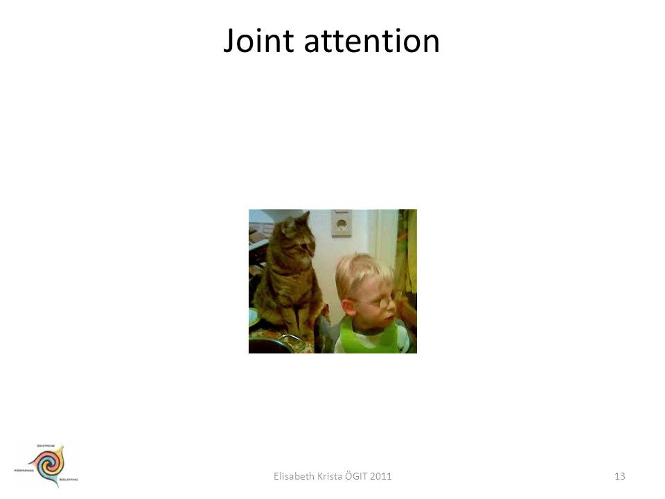 Joint attention 13Elisabeth Krista ÖGIT 2011