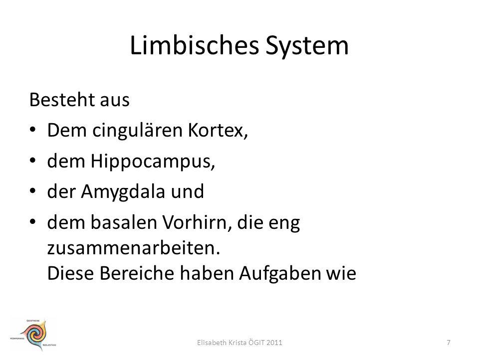 Limbisches System Besteht aus Dem cingulären Kortex, dem Hippocampus, der Amygdala und dem basalen Vorhirn, die eng zusammenarbeiten. Diese Bereiche h