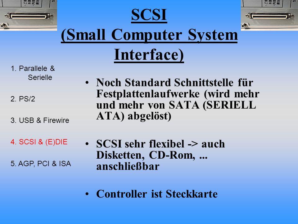 SCSI (Small Computer System Interface) Noch Standard Schnittstelle für Festplattenlaufwerke (wird mehr und mehr von SATA (SERIELL ATA) abgelöst) SCSI sehr flexibel -> auch Disketten, CD-Rom,...