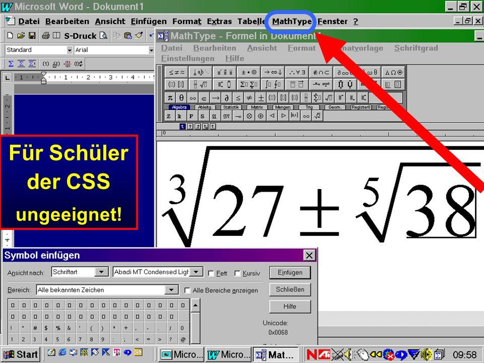 Für die meisten Schüler der CSS wegen Maussteuerung keine praktische Bedeutung!! Normaler Windows Formeleditor