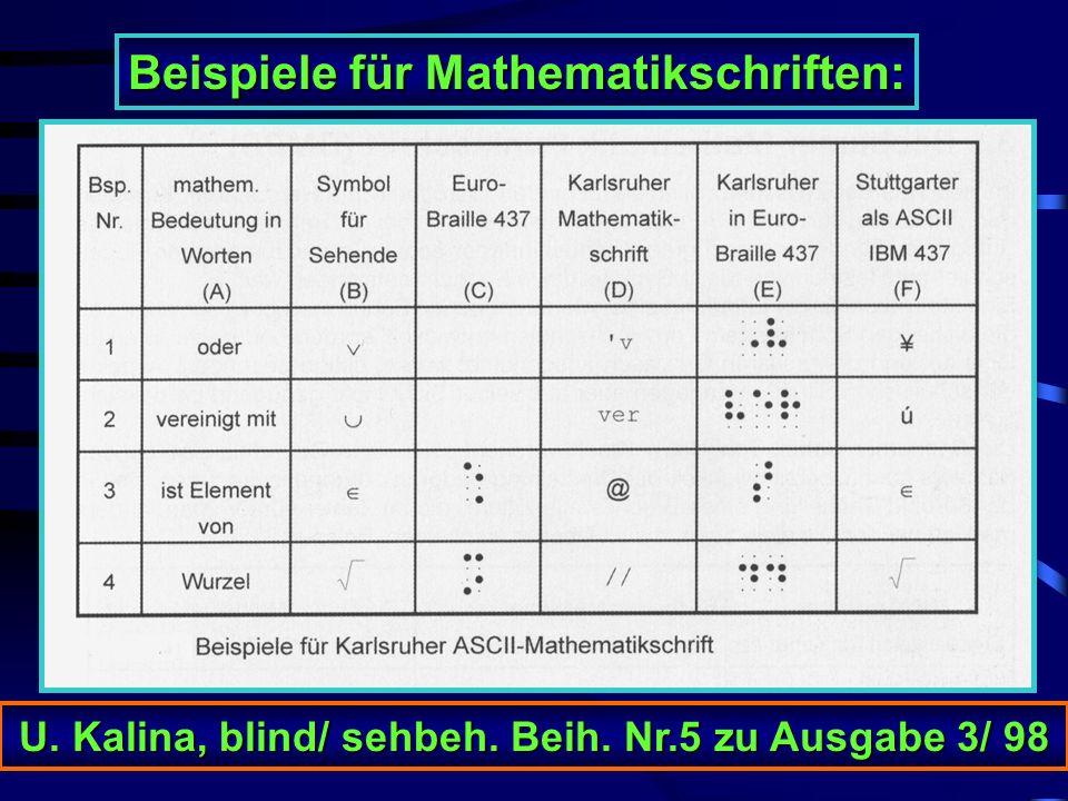 Welche Mathematikschrift soll in der Schule benutzt werden? Ulrich Kalina, Deutsche Blindenstudienanstalt Marburg Deutsche Blindenstudienanstalt Marbu