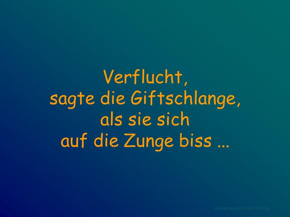 Verflucht, sagte die Giftschlange, als sie sich auf die Zunge biss... www.schwachsinn-verteiler.de