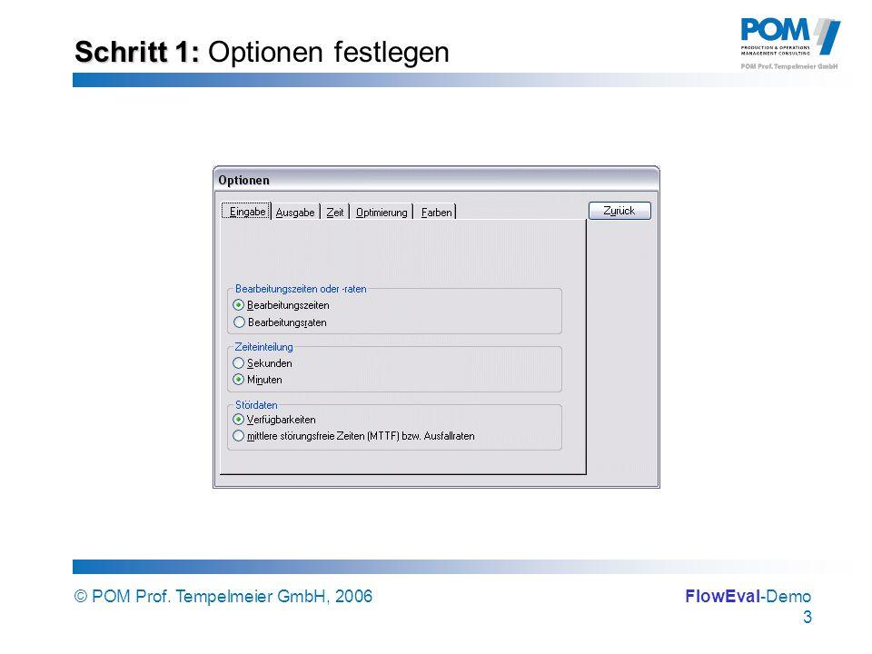 © POM Prof. Tempelmeier GmbH, 2006FlowEval-Demo 3 Schritt 1: Schritt 1: Optionen festlegen