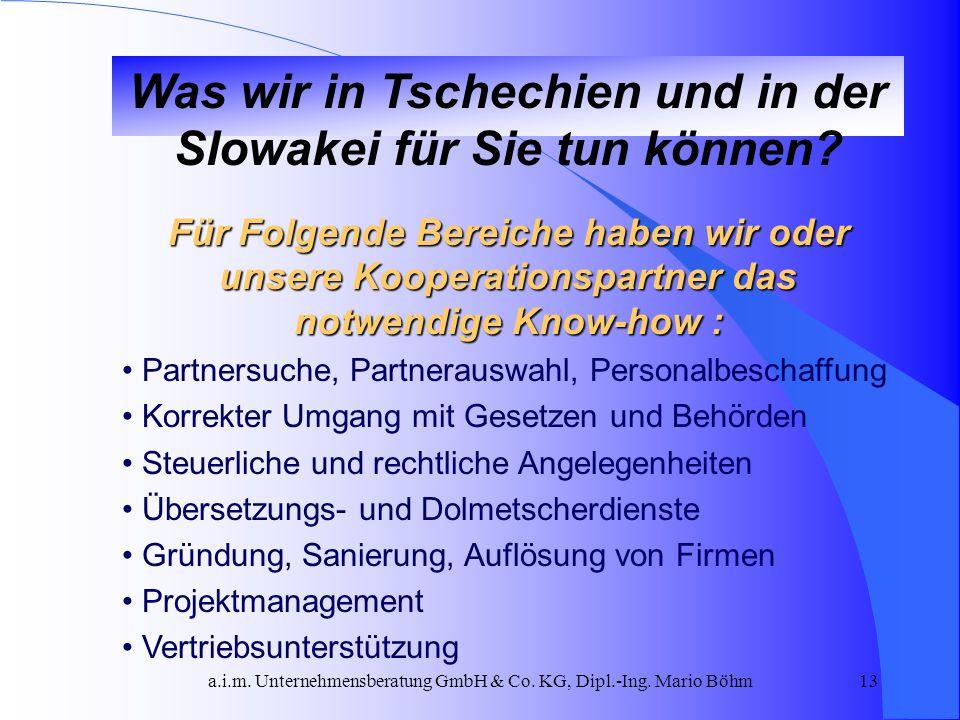 a.i.m. Unternehmensberatung GmbH & Co. KG, Dipl.-Ing. Mario Böhm13 Was wir in Tschechien und in der Slowakei für Sie tun können? Für Folgende Bereiche