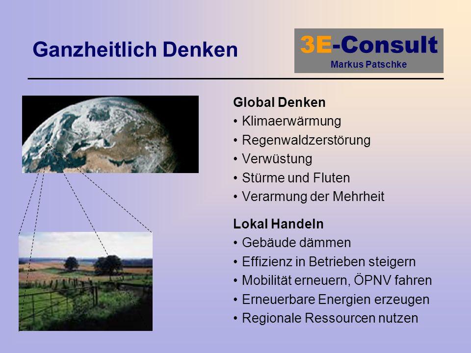 3E-Consult Markus Patschke Ganzheitlich Denken Global Denken Klimaerwärmung Regenwaldzerstörung Verwüstung Stürme und Fluten Verarmung der Mehrheit Lo