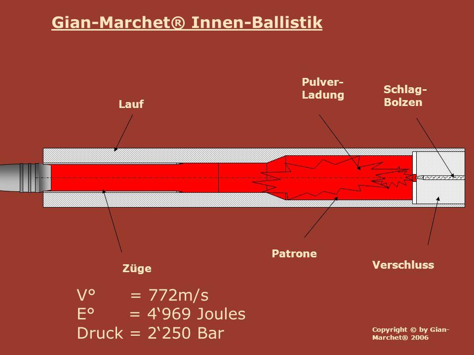 Copyright © by Gian- Marchet® 2006 Lauf Verschluss Züge Schlag- Bolzen Patrone Pulver- Ladung V° = 772m/s E° = 4969 Joules Druck = 2250 Bar Gian-Marchet® Innen-Ballistik