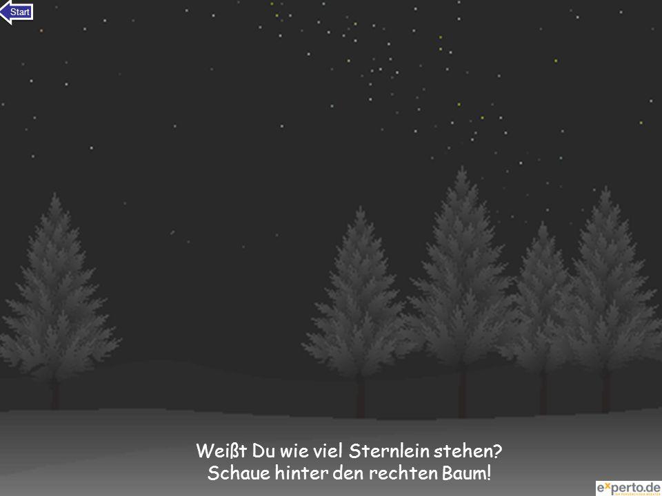 Weißt Du wie viel Sternlein stehen? Schaue hinter den rechten Baum! Start