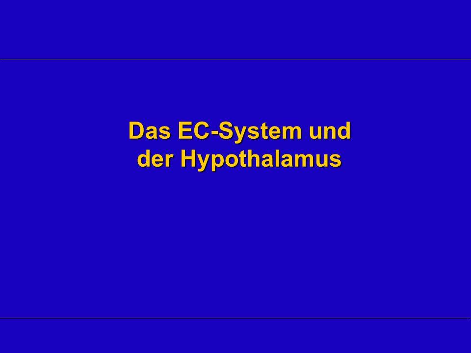 Das EC-System und der Hypothalamus