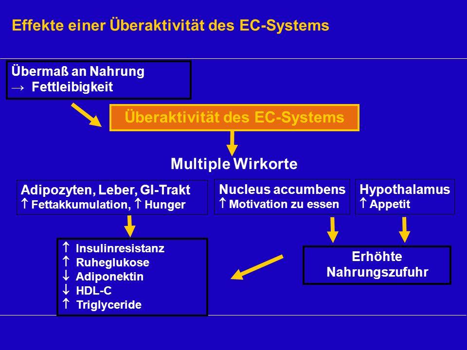 Insulinresistanz Ruheglukose Adiponektin HDL-C Triglyceride Effekte einer Überaktivität des EC-Systems Adipozyten, Leber, GI-Trakt Fettakkumulation, H