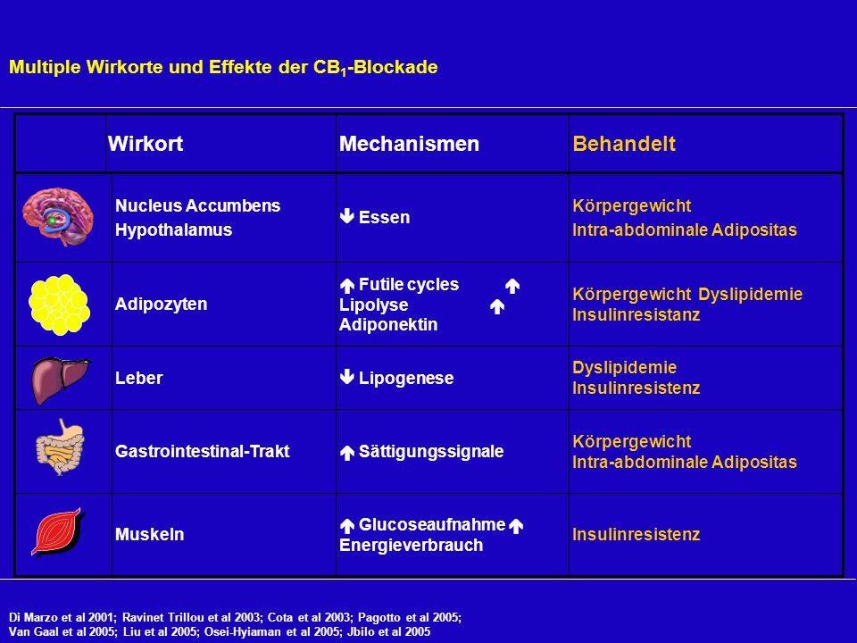 Multiple Wirkorte und Effekte der CB 1 -Blockade Insulinresistenz Glucoseaufnahme Energieverbrauch Muskeln Körpergewicht Intra-abdominale Adipositas S