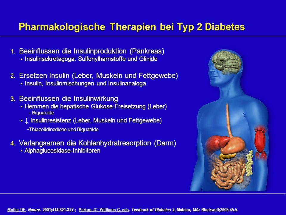 Pharmakologische Therapien bei Typ 2 Diabetes 1. Beeinflussen die Insulinproduktion (Pankreas) Insulinsekretagoga: Sulfonylharnstoffe und Glinide 2. E