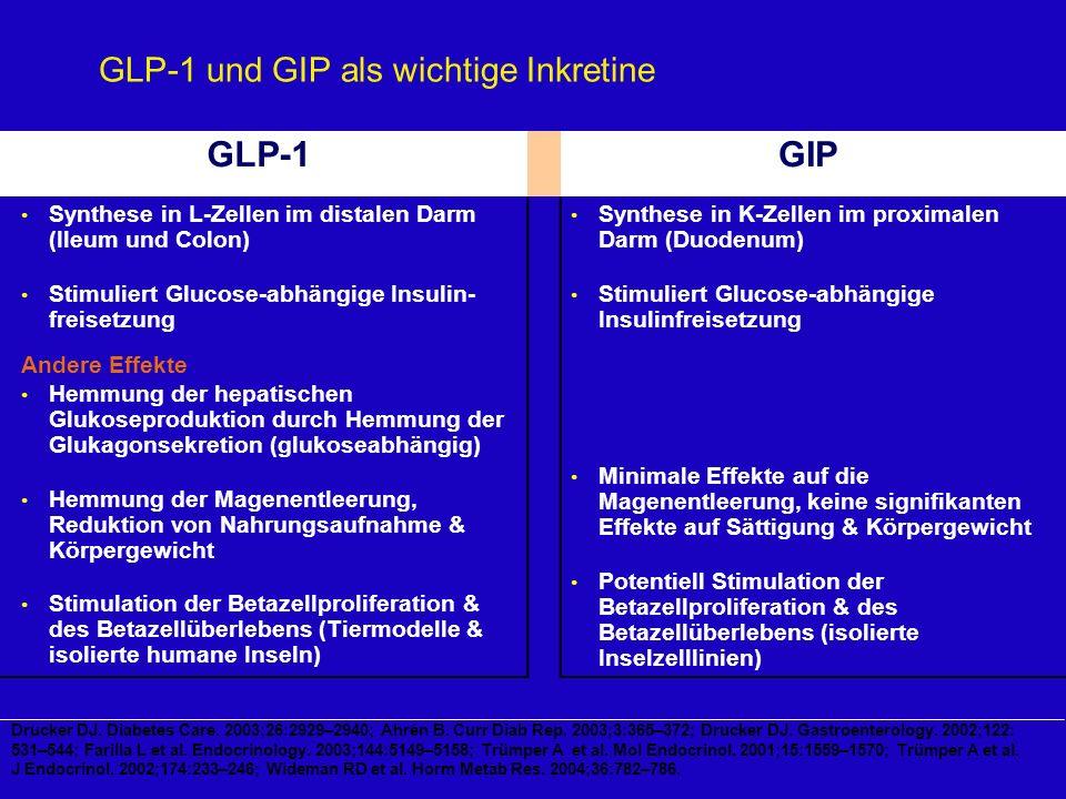 GLP-1 und GIP als wichtige Inkretine GLP-1GIP Synthese in L-Zellen im distalen Darm (Ileum und Colon) Stimuliert Glucose-abhängige Insulin- freisetzun