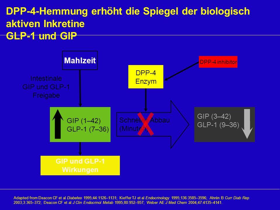 DPP-4-Hemmung erhöht die Spiegel der biologisch aktiven Inkretine GLP-1 und GIP Adapted from Deacon CF et al Diabetes 1995;44:1126–1131; Kieffer TJ et