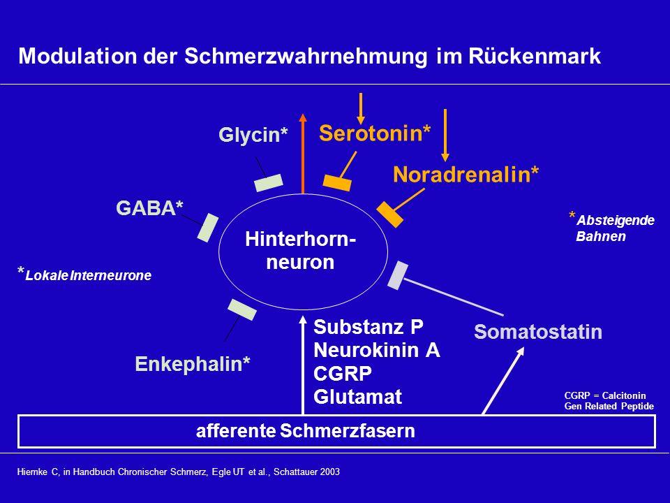 Modulation der Schmerzwahrnehmung im Rückenmark Hiemke C, in Handbuch Chronischer Schmerz, Egle UT et al., Schattauer 2003 Hinterhorn- neuron afferent