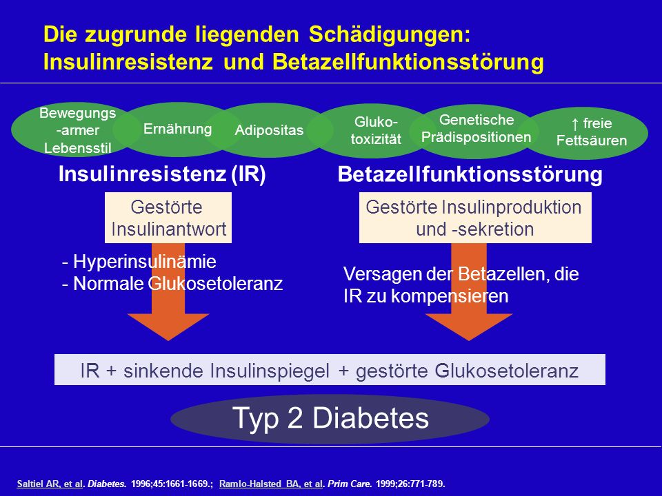 * * * * * * *p<0.05, type 2 diabetes vs.NGT Meal started at time 0 and finished at 10–15 minutes.