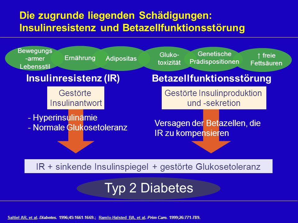 Gestörte Insulinproduktion und -sekretion Die zugrunde liegenden Schädigungen: Insulinresistenz und Betazellfunktionsstörung Saltiel AR, et alSaltiel