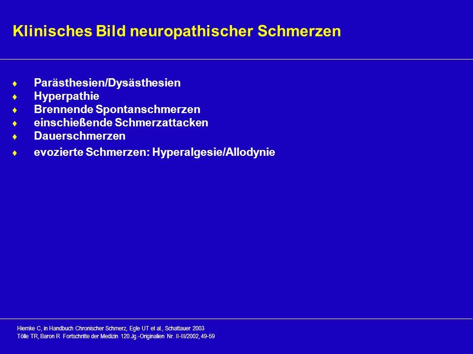 Klinisches Bild neuropathischer Schmerzen Parästhesien/Dysästhesien Hyperpathie Brennende Spontanschmerzen einschießende Schmerzattacken Dauerschmerze