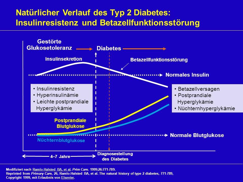 Normale Blutglukose Normales Insulin 4–7 Jahre Natürlicher Verlauf des Typ 2 Diabetes: Insulinresistenz und Betazellfunktionsstörung Diabetes Nüchtern