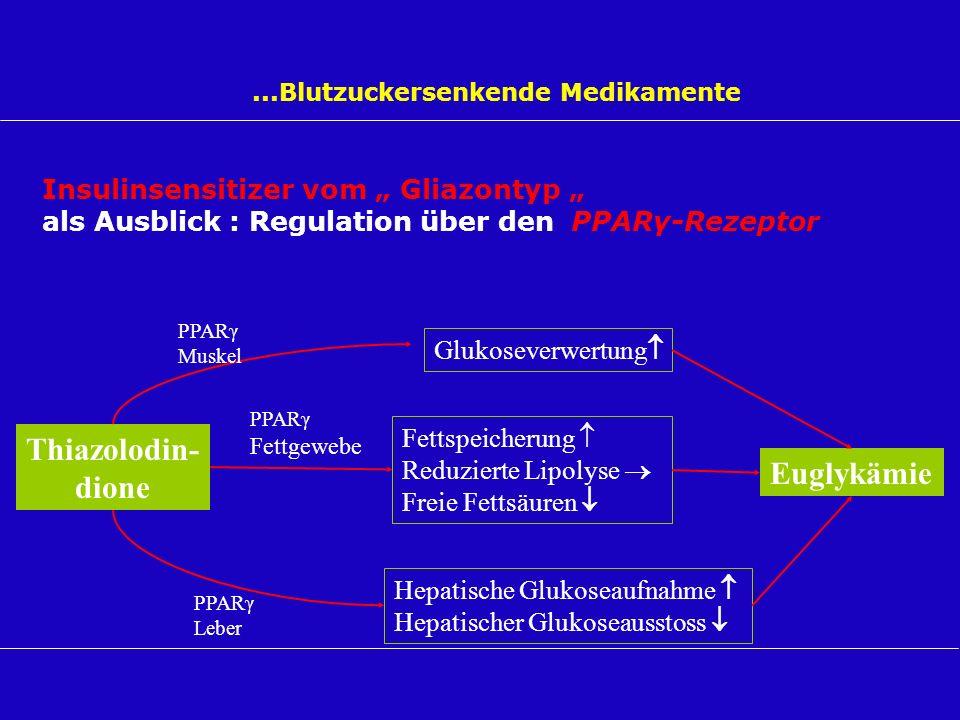 ...Blutzuckersenkende Medikamente Insulinsensitizer vom Gliazontyp als Ausblick : Regulation über den PPARγ-Rezeptor Thiazolodin- dione Fettspeicherun