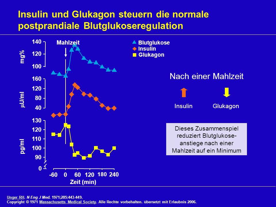 Insulin und Glukagon steuern die normale postprandiale Blutglukoseregulation Unger RHUnger RH. N Eng J Med. 1971;285:443-449. Copyright © 1971 Massach