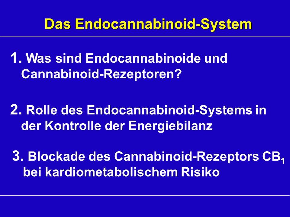 2. Rolle des Endocannabinoid-Systems in der Kontrolle der Energiebilanz 3. Blockade des Cannabinoid-Rezeptors CB 1 bei kardiometabolischem Risiko 1. W