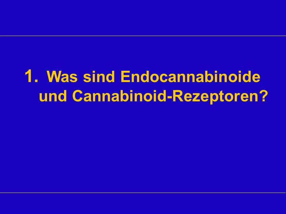 1. Was sind Endocannabinoide und Cannabinoid-Rezeptoren?