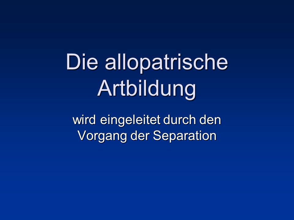 Die allopatrische Artbildung wird eingeleitet durch den Vorgang der Separation