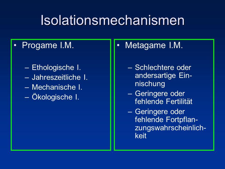 Isolationsmechanismen Progame I.M. –Ethologische I. –Jahreszeitliche I. –Mechanische I. –Ökologische I. Metagame I.M. –Schlechtere oder andersartige E