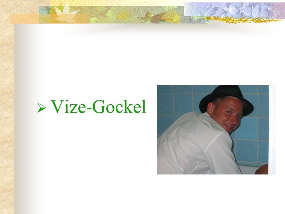 Vize-Gockel