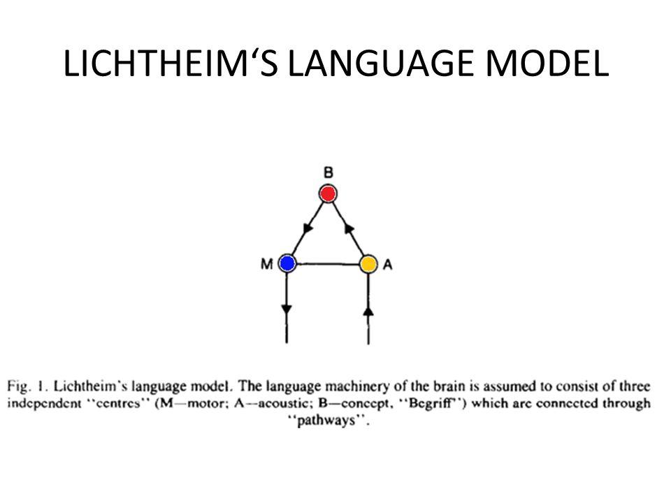 LICHTHEIMS LANGUAGE MODEL