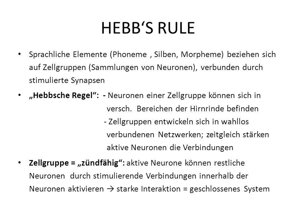 HEBBS RULE Sprachliche Elemente (Phoneme, Silben, Morpheme) beziehen sich auf Zellgruppen (Sammlungen von Neuronen), verbunden durch stimulierte Synap