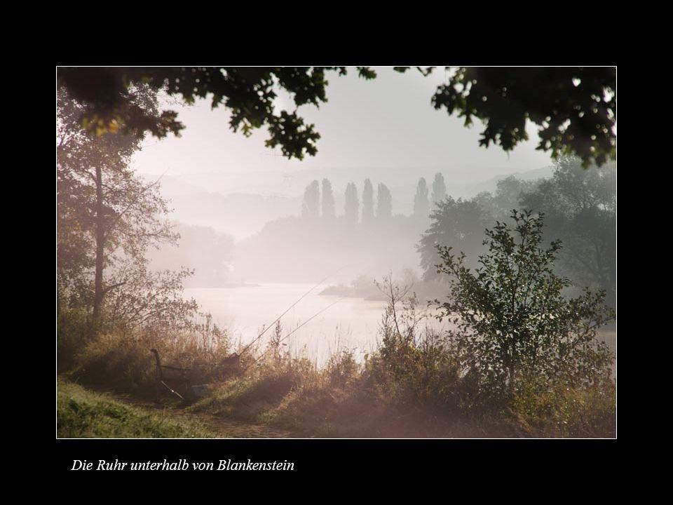 Die Ruhr bei Burg Hammerstein