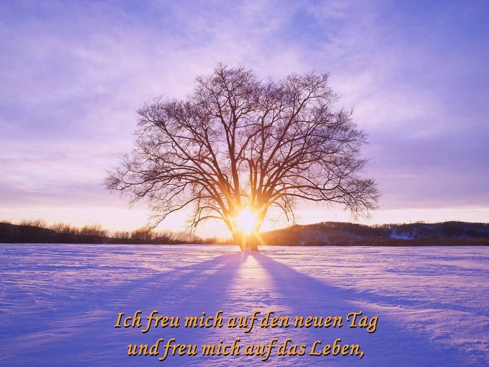 Geister im Sonnenlicht vergeh'n und kraftlos weiterziehn. Geister im Sonnenlicht vergeh'n und kraftlos weiterziehn.