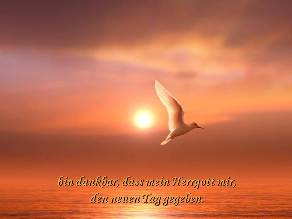 bin dankbar, dass mein Herrgott mir, den neuen Tag gegeben.