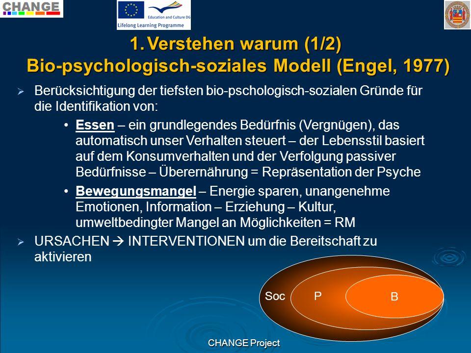 CHANGE Project 1.Verstehen warum (1/2) Bio-psychologisch-soziales Modell (Engel, 1977) Bio-psychologisch-soziales Modell (Engel, 1977) Berücksichtigun