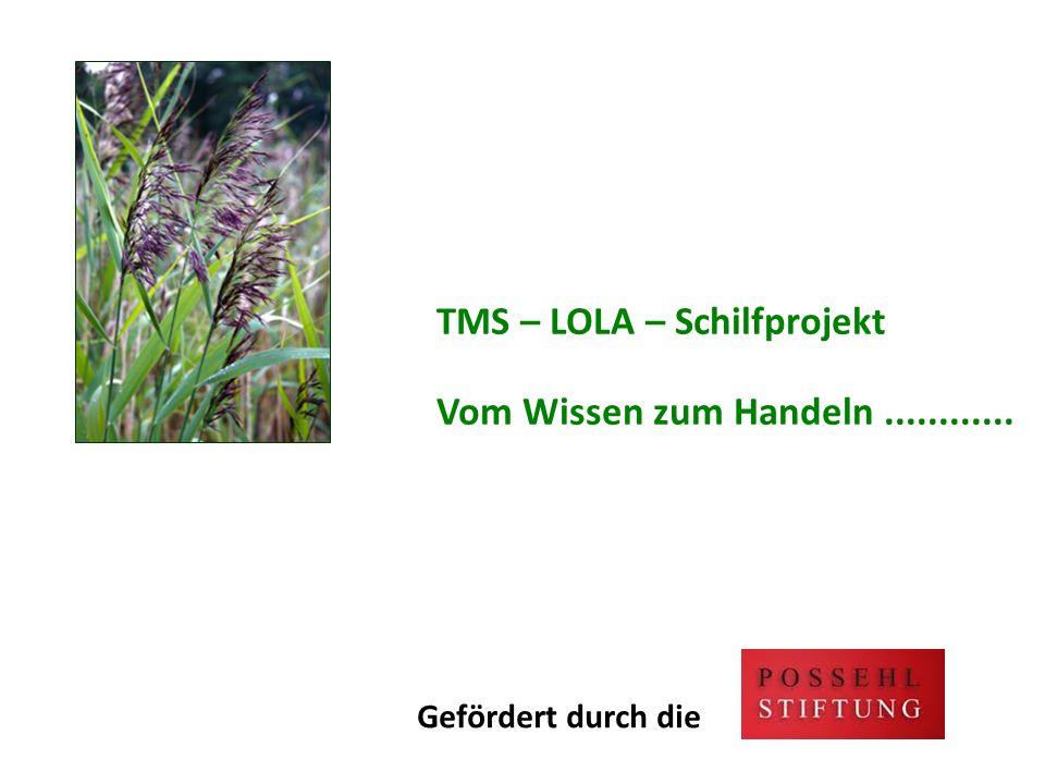 TMS – LOLA – Schilfprojekt Vom Wissen zum Handeln............ Gefördert durch die