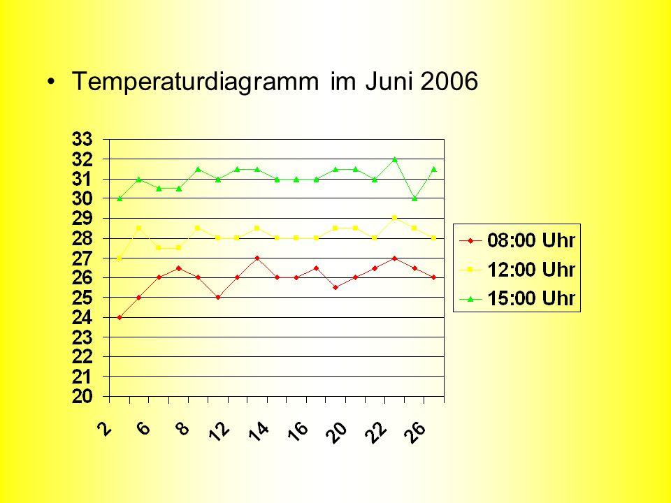 Temperaturdiagramm im Juni 2006