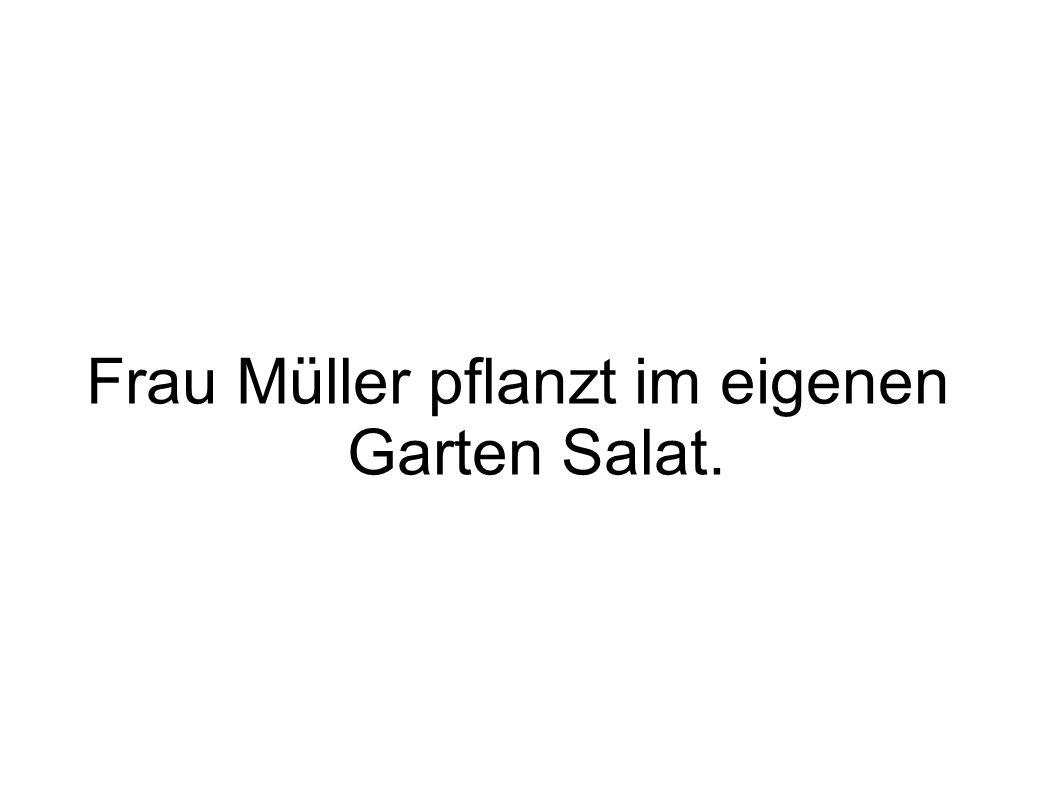 Frau Müller pflanzt im eigenen Garten Salat.
