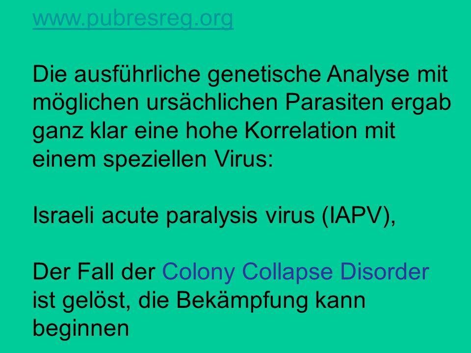 www.pubresreg.org Die ausführliche genetische Analyse mit möglichen ursächlichen Parasiten ergab ganz klar eine hohe Korrelation mit einem speziellen Virus: Israeli acute paralysis virus (IAPV), Der Fall der Colony Collapse Disorder ist gelöst, die Bekämpfung kann beginnen