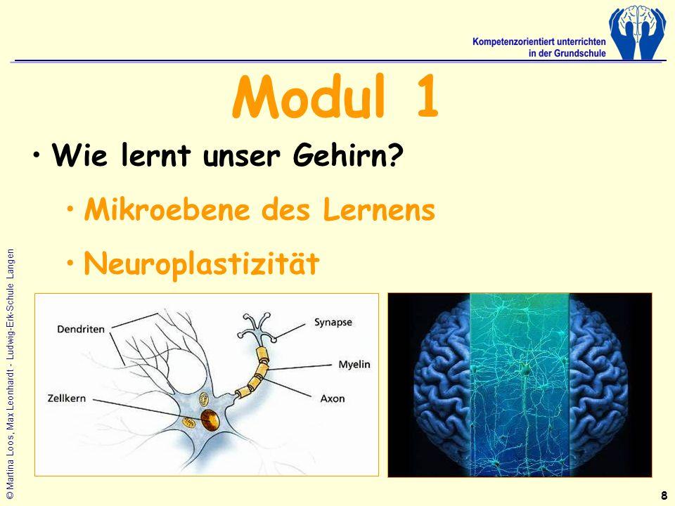© Martina Loos, Max Leonhardt - Ludwig-Erk-Schule Langen Modul 1 Wie lernt unser Gehirn.